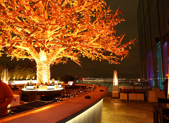 Sushi Samba The must Visit Restaurant In London
