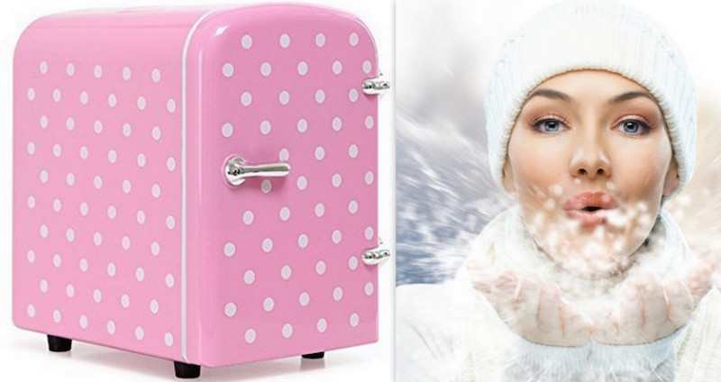 Cosmetics Fridge COVER